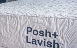 Posh+Lavish Reveal Plush