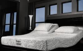 Posh & Lavish Bed